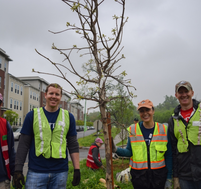 HITT Team Plants Trees